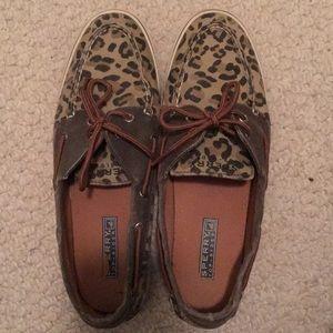 Cheetah sperry